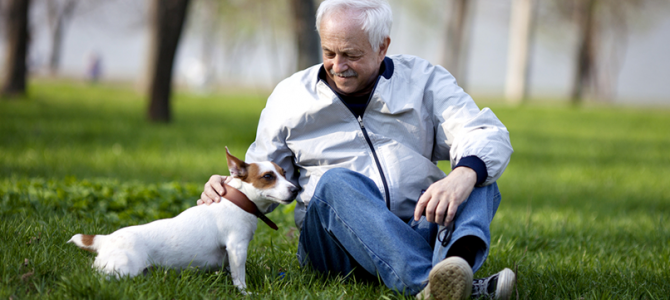 Un IVA de lujo para nuestras mascotas significa….