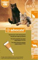 advocate_04