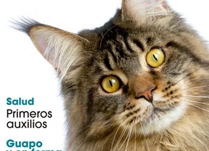 """Revista """"El Gato en Casa"""""""